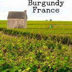 Pinterest image: image of Burgundy with caption 'Wine Tasting in Burgundy France'