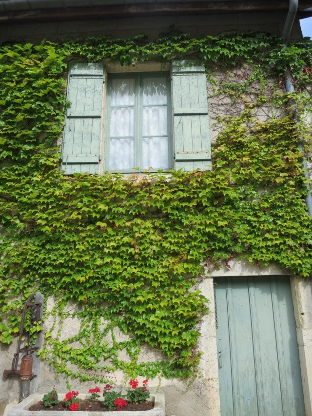 Window in the Vines in Burgundy France