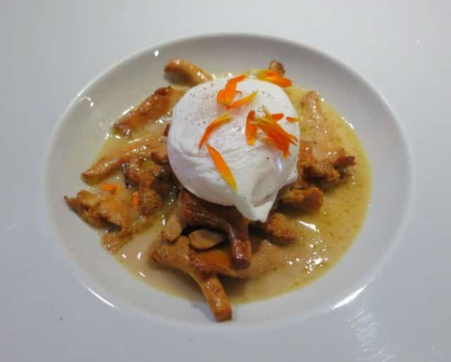 Poached Egg Over Girolles
