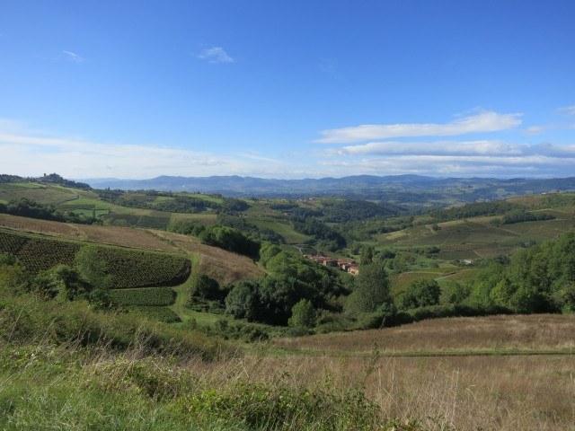 Rolling Hills Beaujolais France
