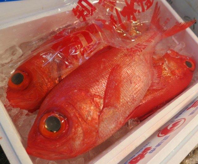 Fish at Tsukiji Market Tokyo - Japan Tsukiji Market Sushi Breakfast