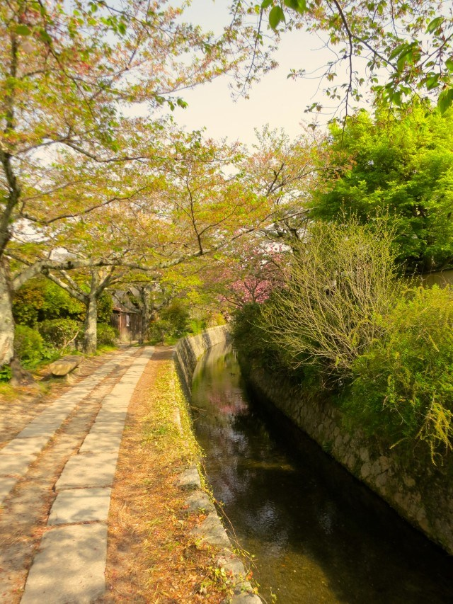 Path of Philosophy Kyoto Japan Around Kyoto