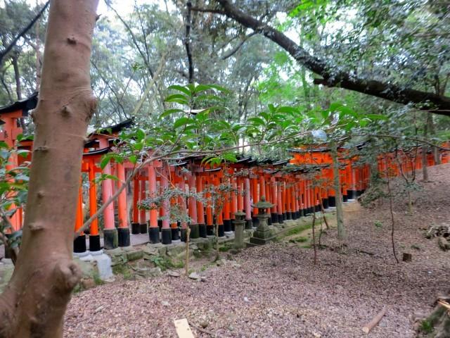 Naturalistic Fushimi-Inari-Taisha in Kyoto Japan