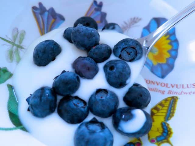 Blueberries and Yogurt Oakland Breakfast