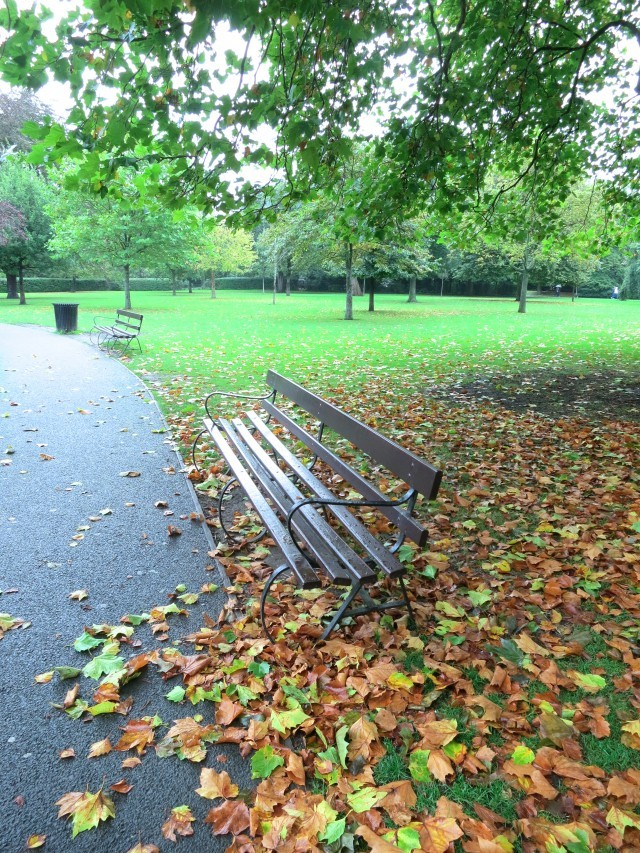 St. Stephens Green in October - Green with Autumnal Colors