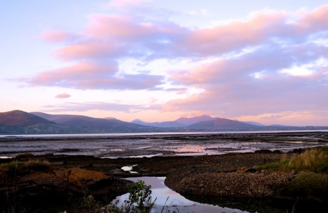 Carlingford Oyster Farm at Twilight