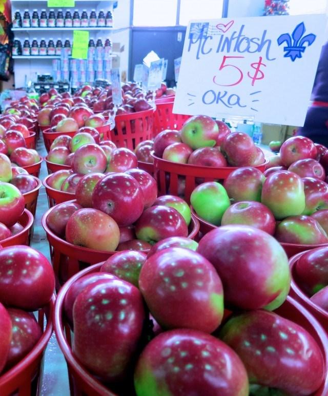 Jean-Talon Apples Long Weekend in Montreal