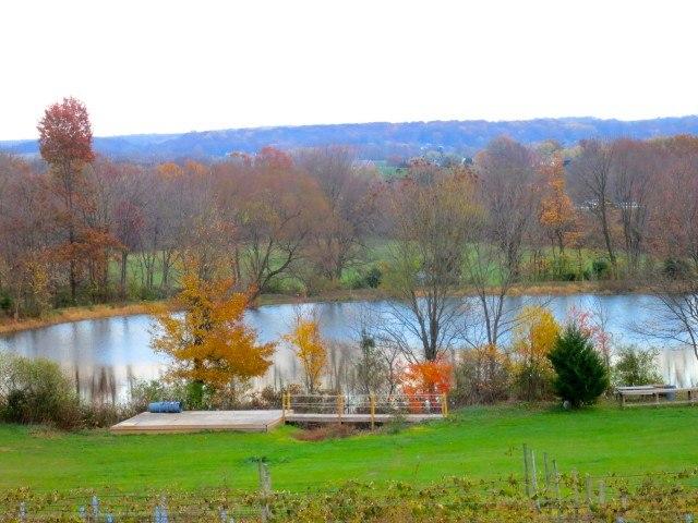 The Vineyard at Hershey Pennsylvania Wine Country