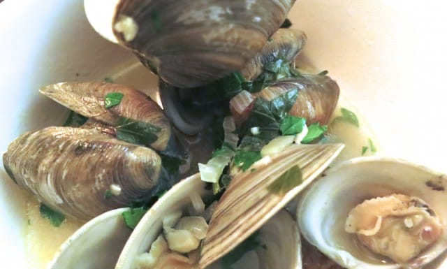 Fish Number 4 - Clams with White Wine, Garlic and Parsley