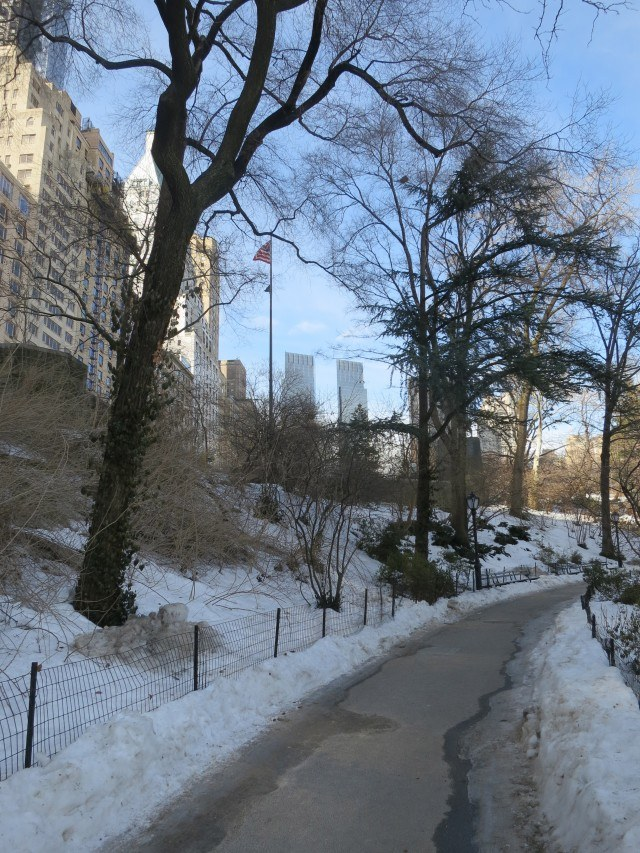 A Walk in Snowy Central Park. Another New York Quickie