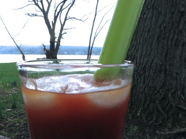 Bloody Mary by Honeoye Lake
