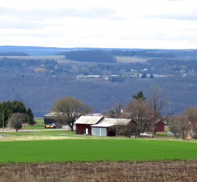 Scenic Finger Terrain 5 Tasting Spots in the Finger Lakes 2foodtrippers