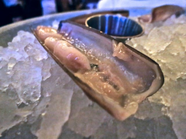 Up Close Razor Clam - Fresh and Delicious at Publican in Chicago