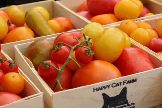 Tomatoes from Happy Cat Farm at Headhouse Farmer's Market in Philadelphia Pennsylvania