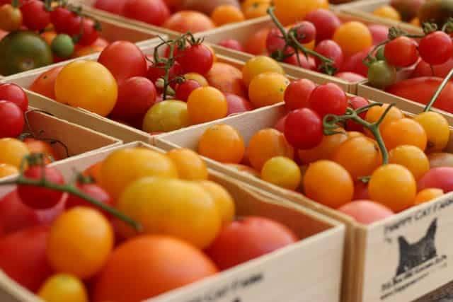 Tomatoes Tomato Obsession Tomato Tartine