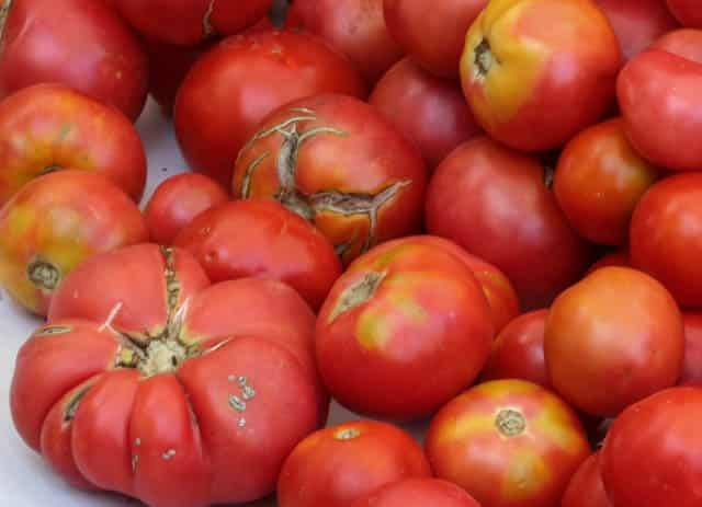 Ugly Heirlom Tomatoes at Headhouse Farmer's Market in Philadelphia Pennsylvania