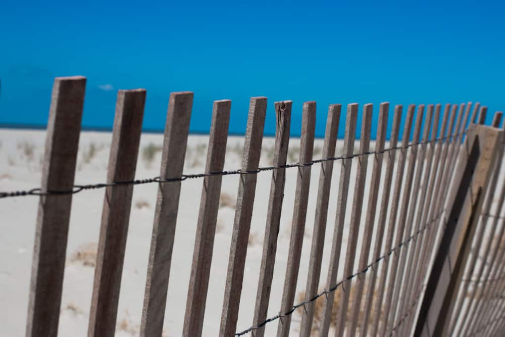 Due to past hurricane damage, there is not a lot of development Holly Beach. Seven Fun Things to do in Lake Charles Louisiana