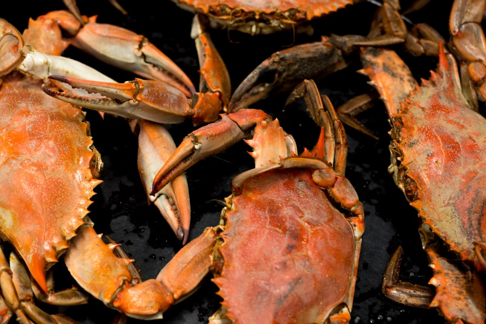 Fresh blue crabs are just one of the culinary delights to enjoy in Lake Charles Louisiana. Food in Lake Charles Louisiana