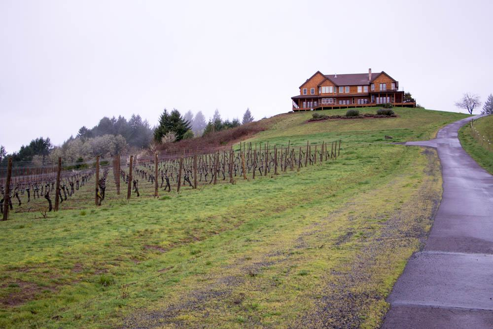 Youngberg Hill stands like a crown jewel at the top of a Willamette Valley hill. It's placement provides epic views from every window and angle. ine with a View in Willamette Valley Youngberg Hill 2foodtrippers