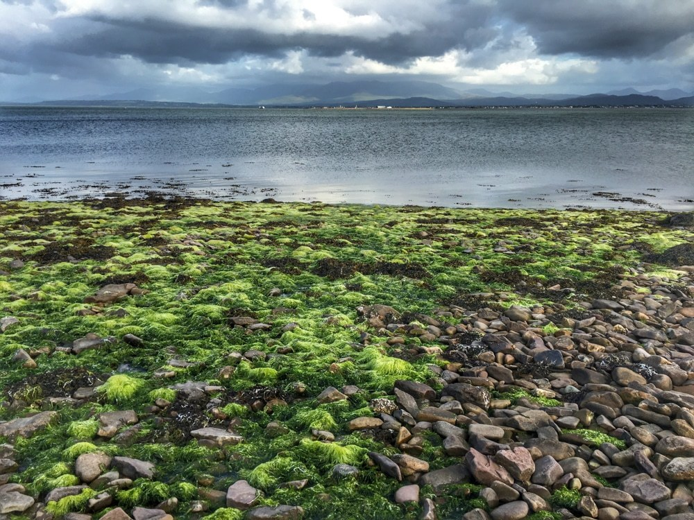 Ireland Road Trip - Dingle Peninsula Coast
