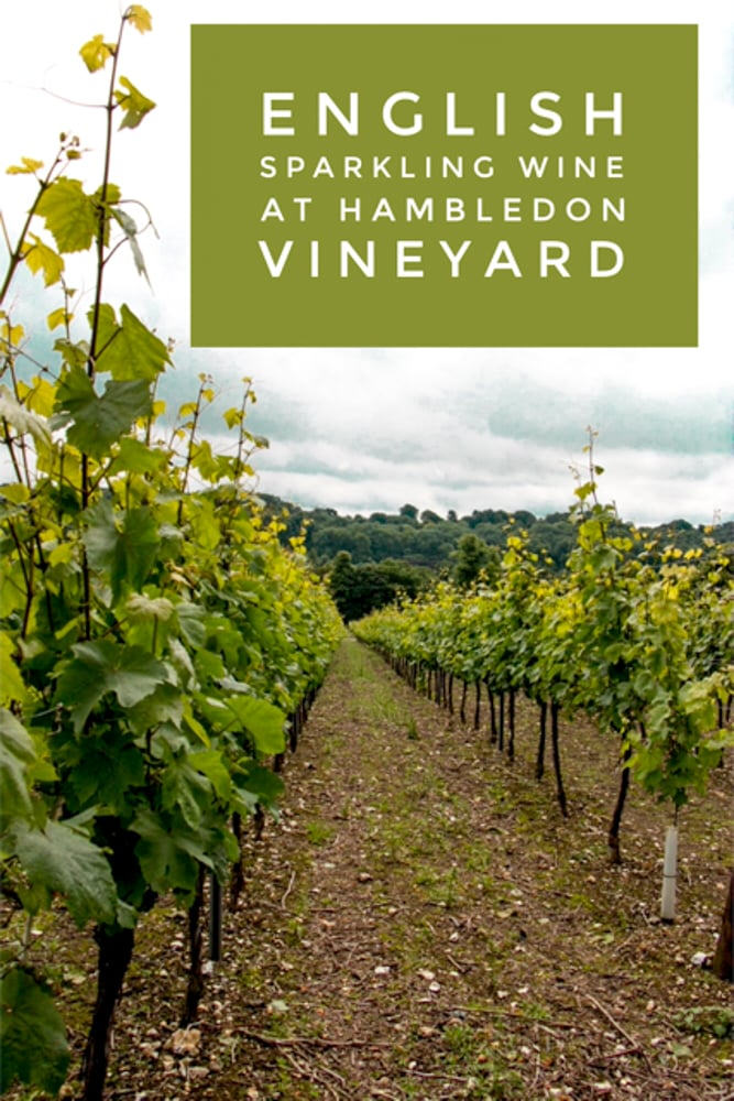 Pinterest image: image of winery with caption 'English Sparkling Wine at Hambledon Vineyard'