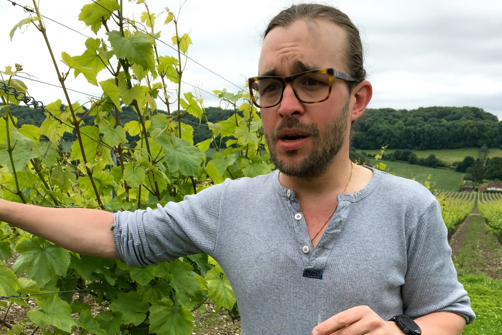 Winemaker Felix Gabillet describes English grapes with a French accent. The winemaker received his training in France and found an opportunity at Hambledon Vineyard. English Sparkling Wine at Hambledon Vineyard