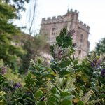 5 Great Hotels in South England