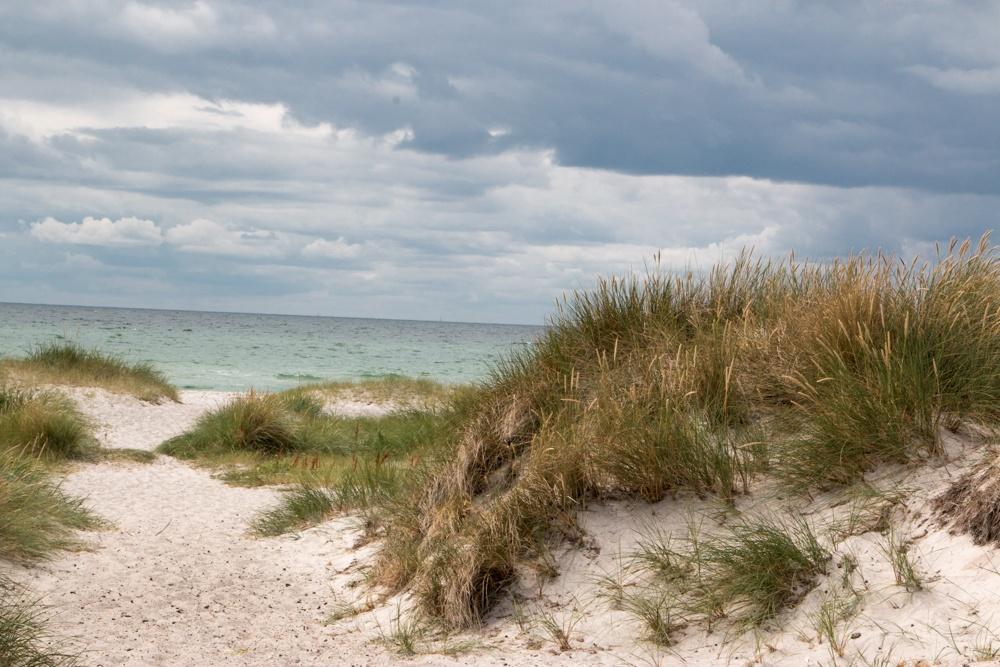 Southern Sweden Coast in Skane Sweden