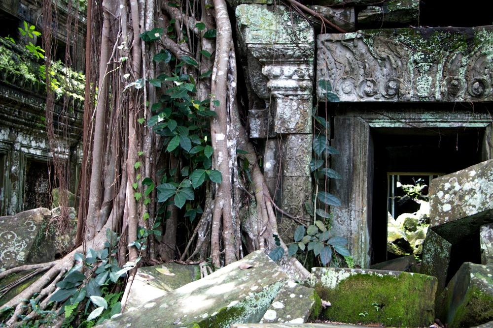 Ta Prohn in Siem Reap Cambodia