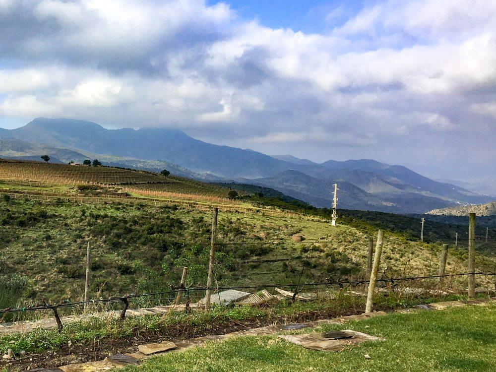 Perafita Winery in Costa Brava
