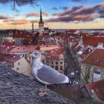 7 Fun Things to Do during a Tallinn Holiday