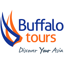 Buffalo Tours Logo