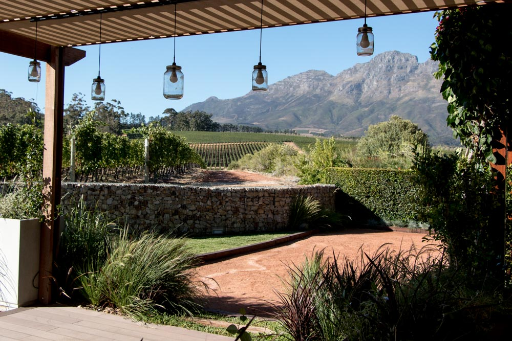 Tasting Room at Glenelly Estate in Stellenbosch South Africa
