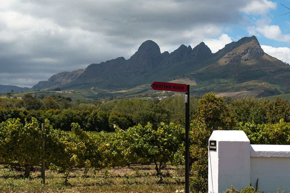 Cape Winelands Mountain View in South Africa