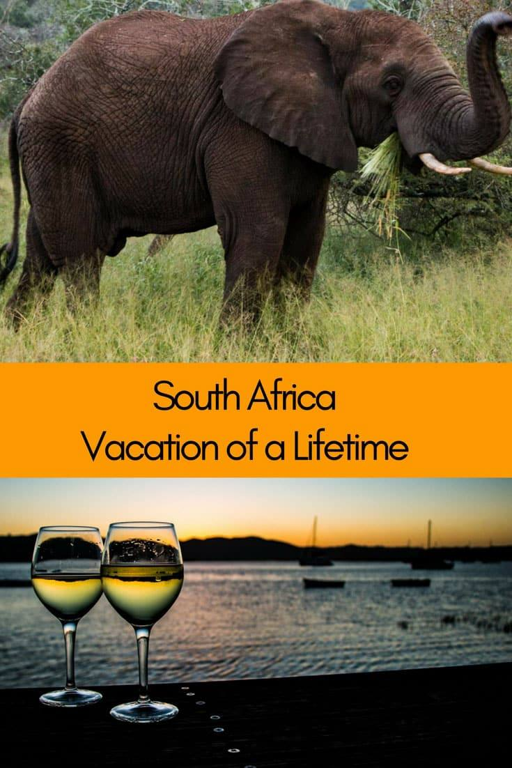 South Africa   Dream Vacation   Cape Town   Cape Winelands   Garden Route   Kruger National Park   Johannesburg #SouthAfrica #SouthAfricaTravel #DreamVacation