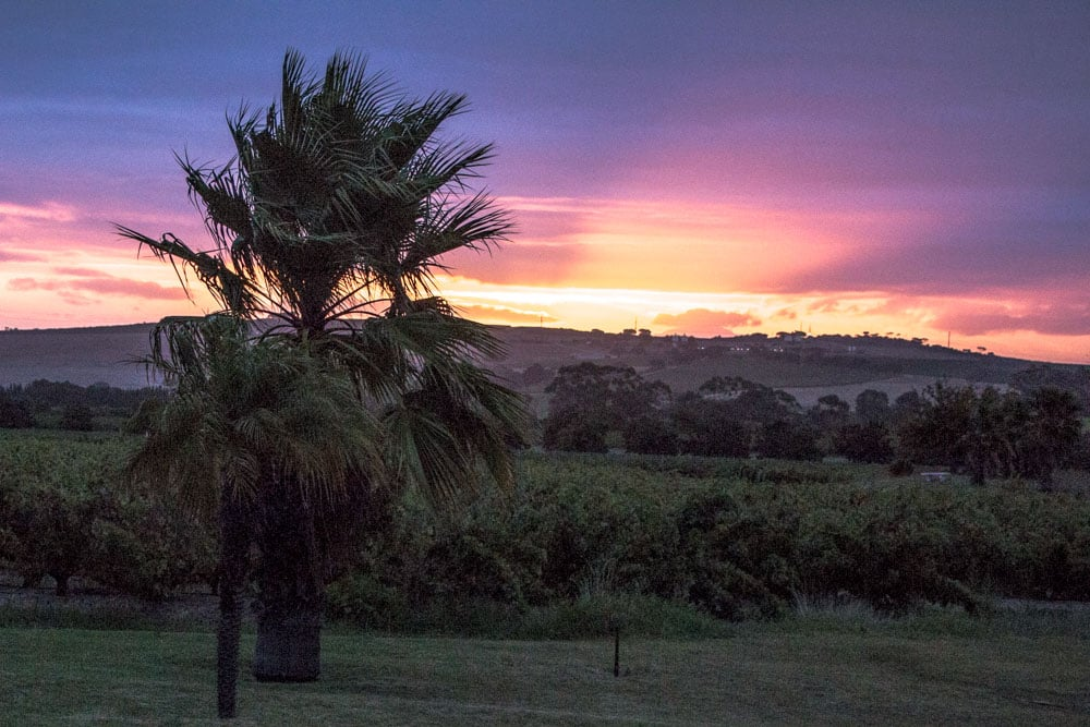Sunset at The Country Guest House in Stellenbosch South Africa
