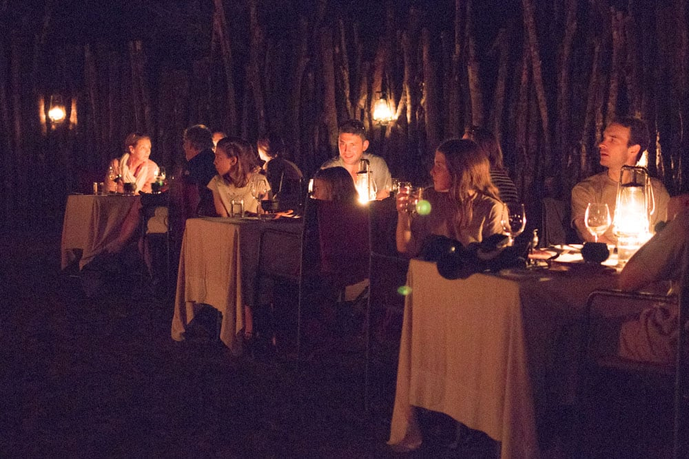 Outdoor Dinner at Thanda Safari in South Africa