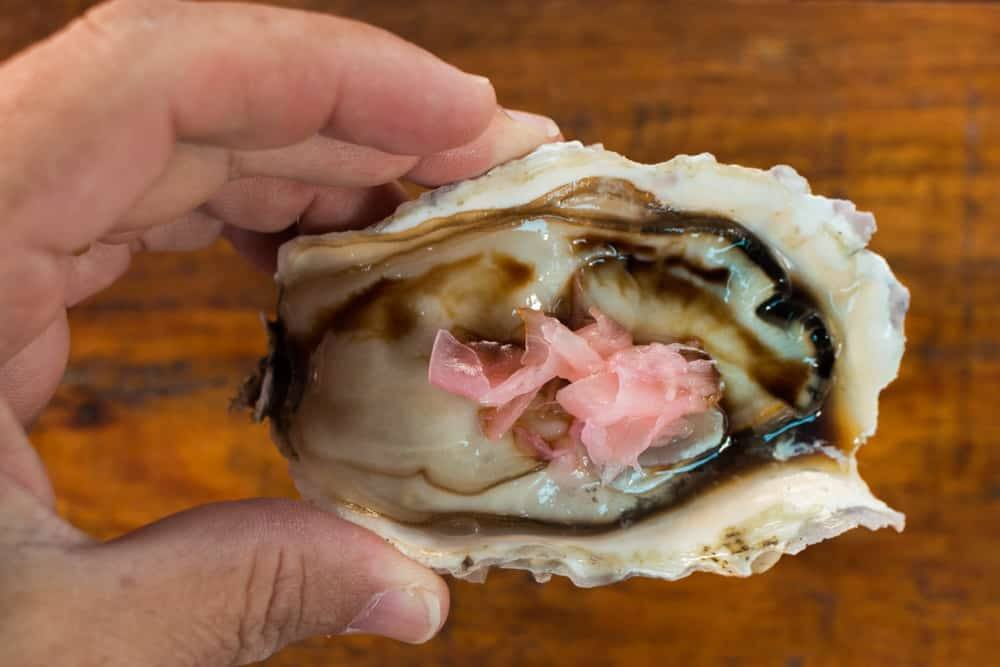 Oyster in Wilderness South Africa
