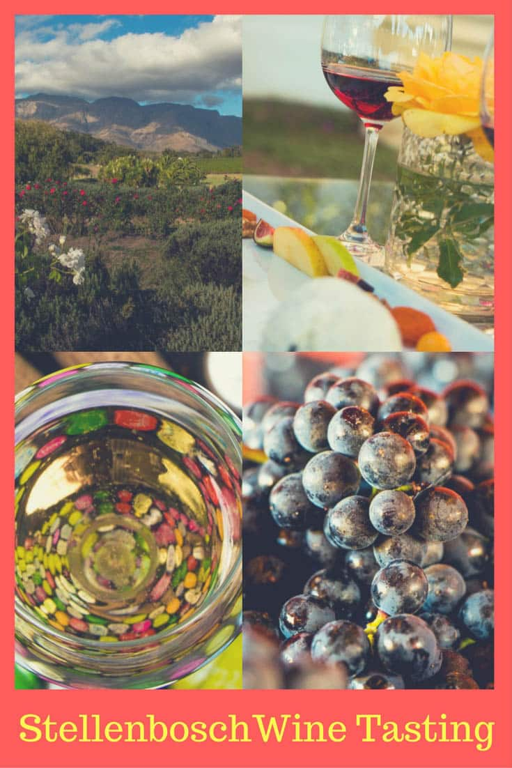 Stellenbosch | South Africa | Stellenbosch South Africa | Stellenbosch Wineries | Stellenbosch Wine Tasting | Stellenbosch Wine Tour | Stellenbosch Wine Farms | Cape Winelands | Capetown | Wine Country | #Stellenbosch #SouthAfrica #WineTasting