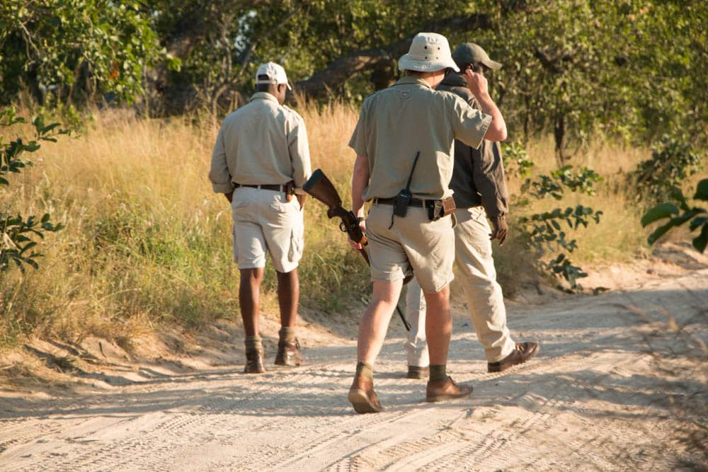 Tracking Expedition at Kirkman's Kamp in South Africa