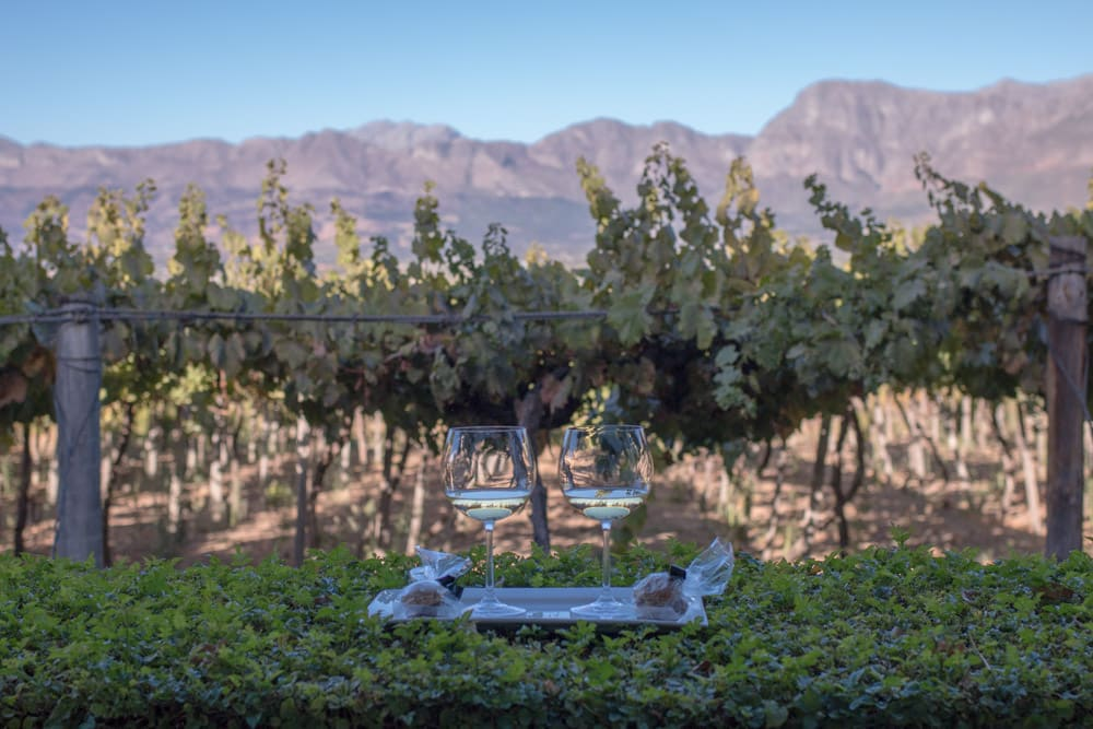 Wine with a View at Grande Roche Hotel in Paarl South Africa