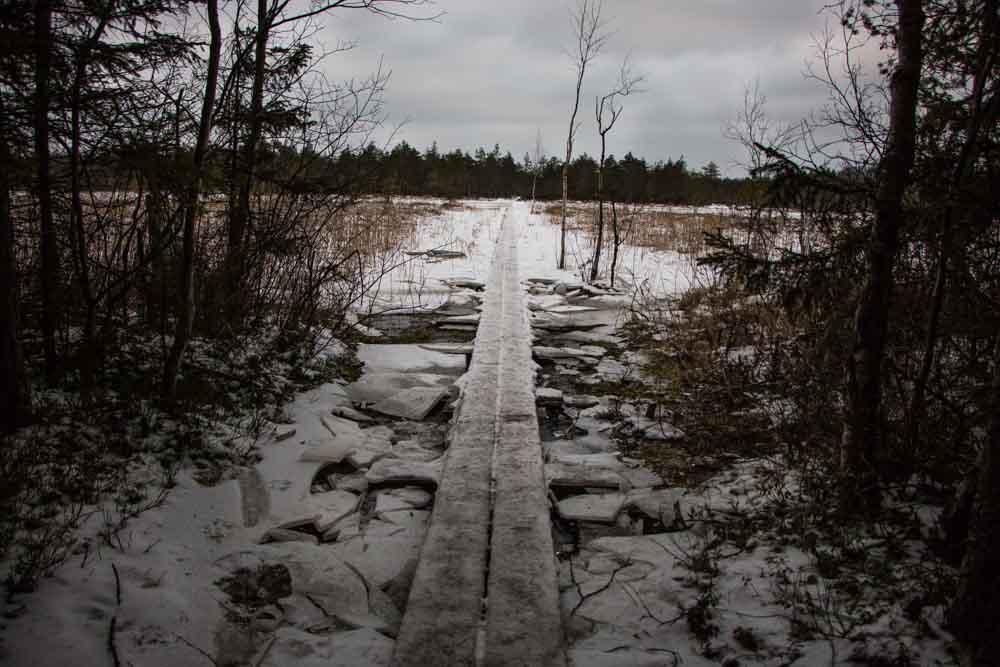 Kurjenrahka Park Nature Trail near Turku Finland