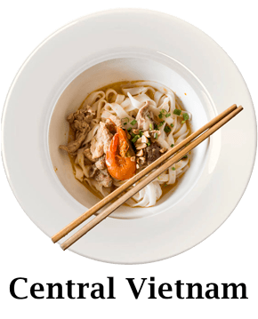 Central Vietnam Plate