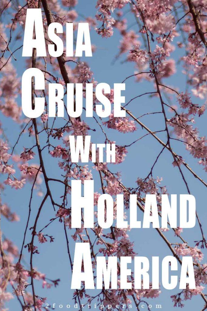 Pinterest image: image of cherry blossoms with caption reading 'Asia Cruise with Holland America'