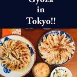 Pinterest image: image of Japanese food with caption reading 'Learn to Cook Gyoza in Tokyo!!'