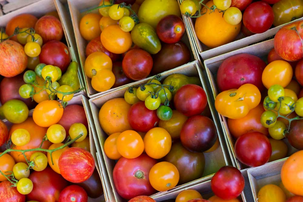 Tomatoes at Headhouse Square in Philadelphia