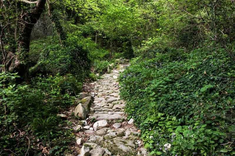 Meteora Tour Nature Walk