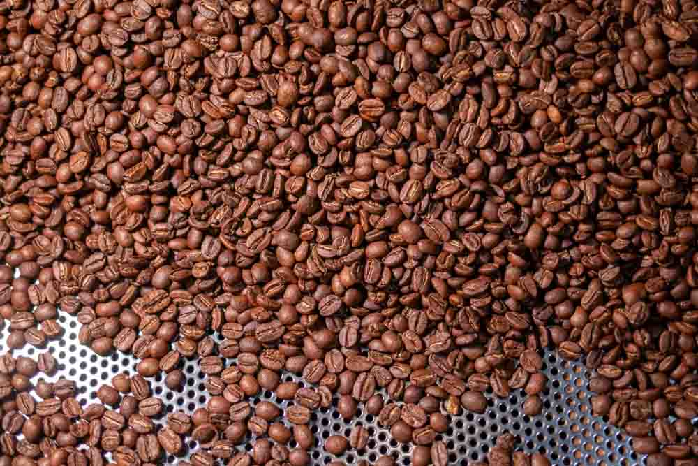 Coffee Beans at elbgold Rostkaffee in Hamburg Germany