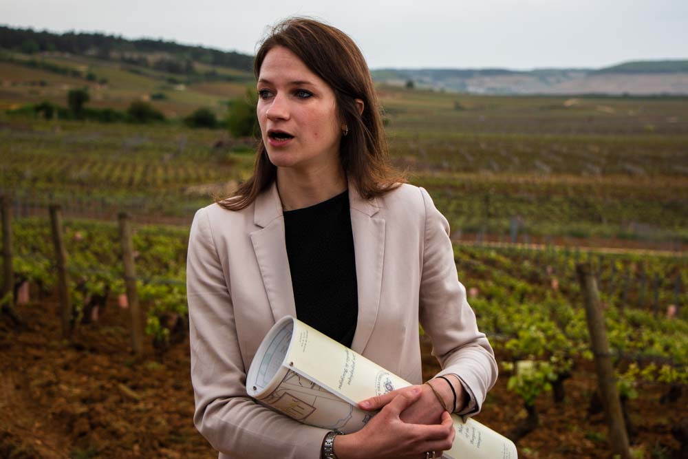 Claire Burnez at Domaine Bouchard Pere et Fils Vineyard in Burgundy