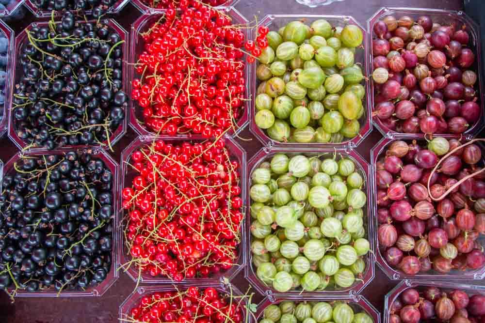 Norway Food - Berries